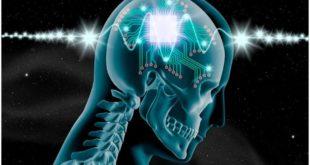 заморозить ваш мозг
